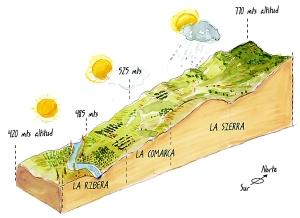 mapa-vinedos